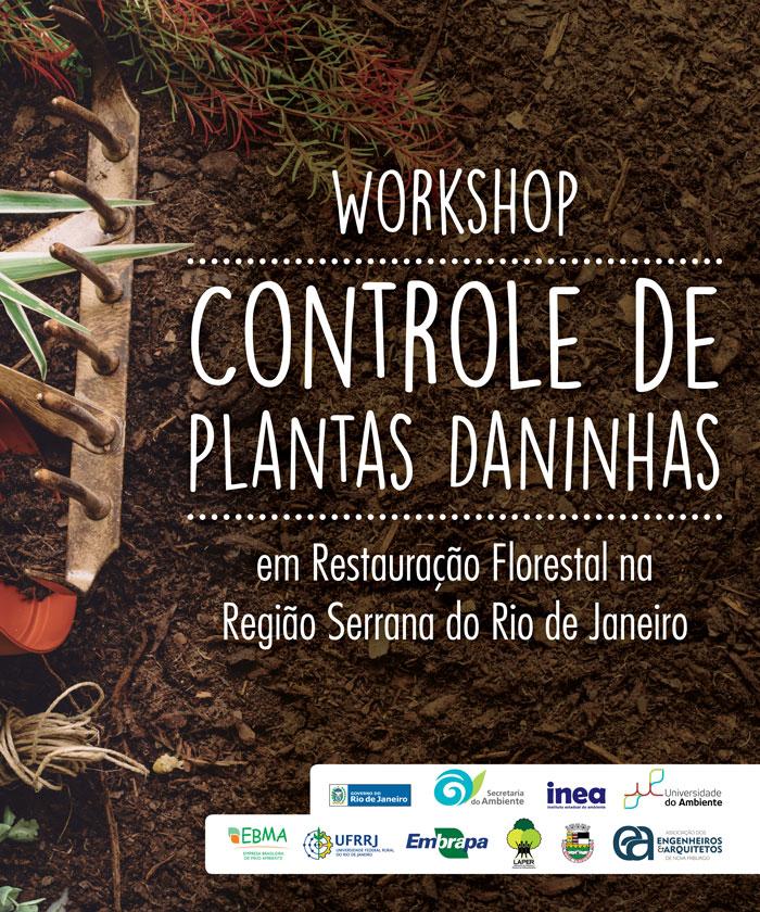 workshop_ervas_daninhas_100x120cm